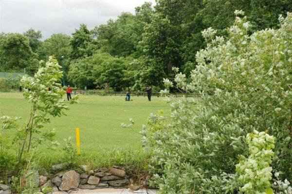golf-klub-beograd-iii-sbb-challenge-2010-60