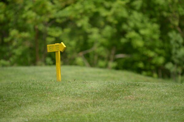 golf-klub-beograd-srbija-rumunija-2013-11