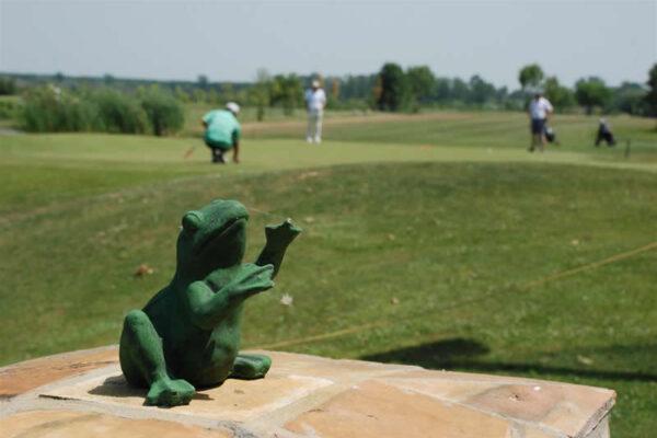 golf-klub-beograd-x-nacionalno-amatersko-prvenstvo-srbije-14i17072011-zabalj-27